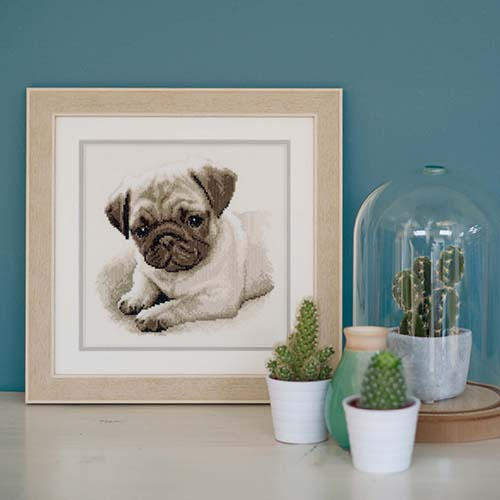 Counted cross stitch kit Pug dog PN-0169650